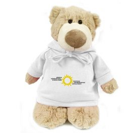 German International School Dubai Bear Mascot – 28CM