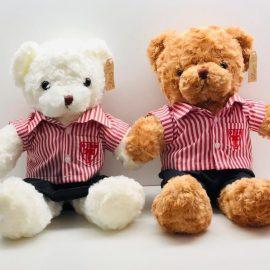 DESS Uniformed Bear Mascot – 28CM