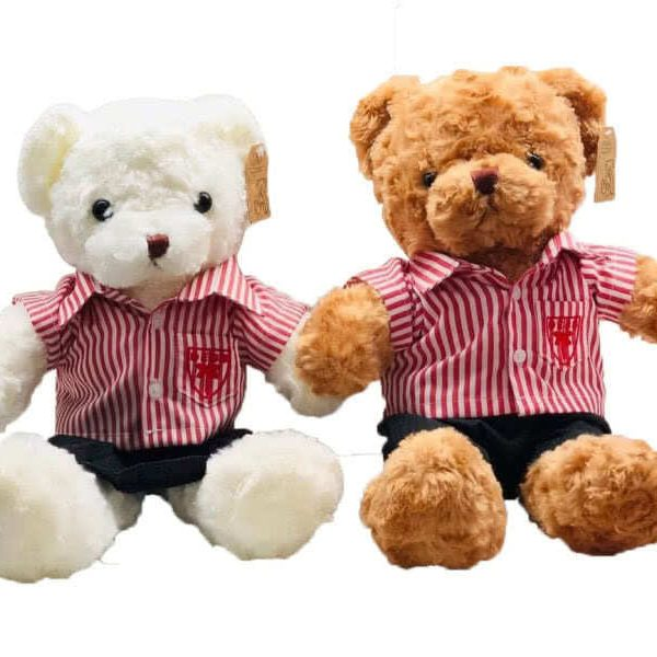 DESS-Uniform-Bear